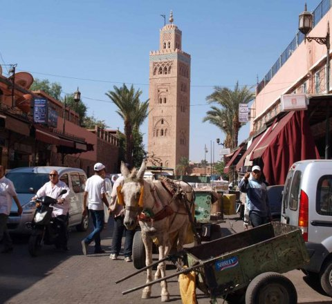 Travel article about A few memories from travelling to Morocco