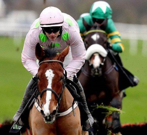 Sport article about Faugheen Looks Set For Another Cheltenham Crown