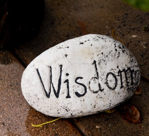 some thoughts about wisdom from life