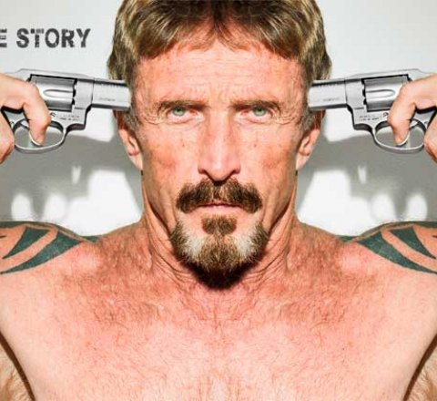 Politics article about will John McAfee run for president in 2020