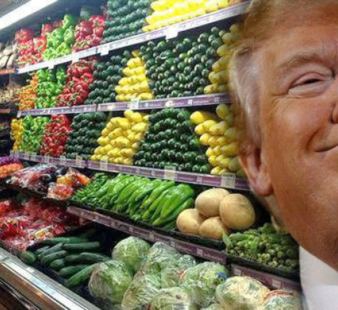 Breaking-News article about trump thinks you need id card to buy groceries