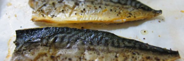 article about The 5 Healthiest Fish for Your Diet