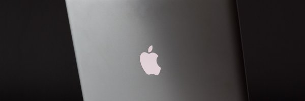 article about apple loses chip patent case