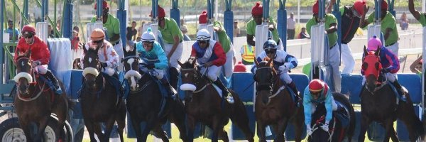 article about How To Bet On Horse Racing And Win