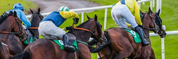 article about 2018 Cheltenham Gold Cup tips - Might Bite destined for further Cheltenham success