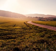 Business article about Why You Need Land Trusts when Buying Land